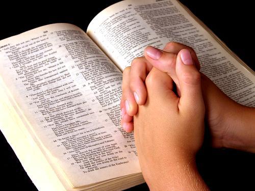 lerr-a-biblia