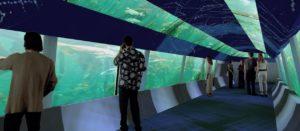 aquario-rio-de-janeiro-aquario